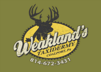 Weakland's Taxidermy